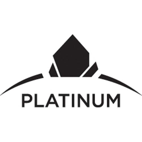 RE/MAX Platinum Club 2020 image